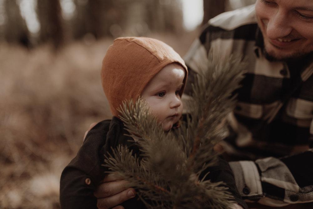 Seattle-Family-Photographer-Kerouac-0797.jpg