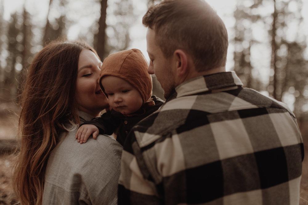 Seattle-Family-Photographer-Kerouac-1158.jpg