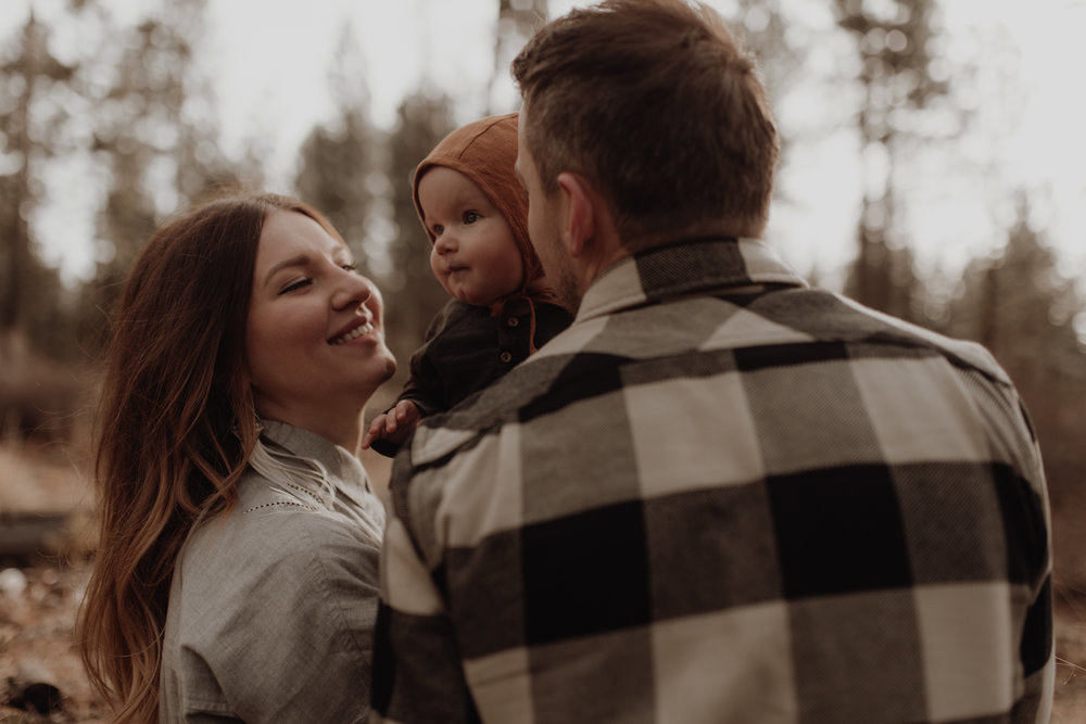Seattle-Family-Photographer-Kerouac-1182.jpg