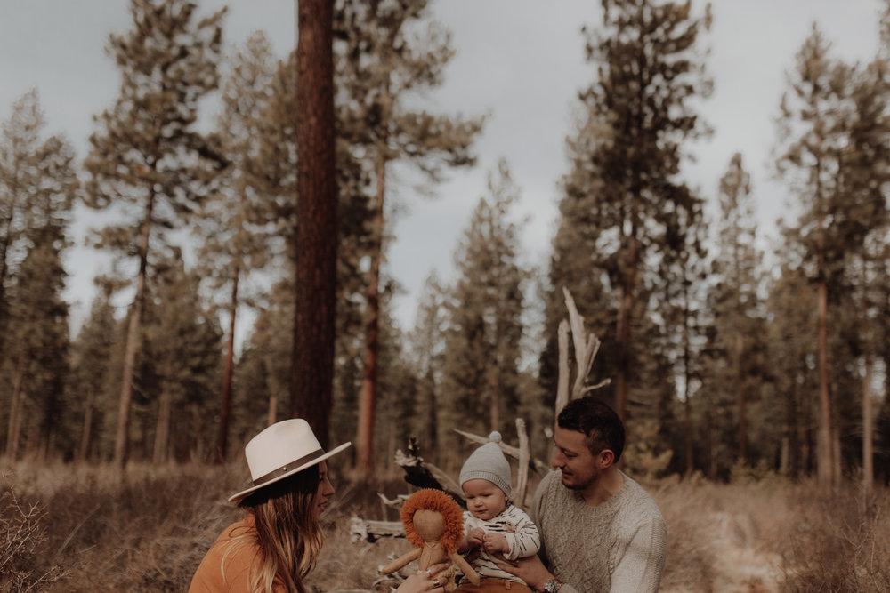 Seattle-Family-Photographer-Kerouac-1352.jpg