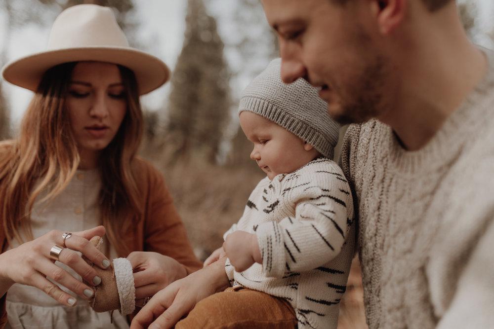 Seattle-Family-Photographer-Kerouac-1364.jpg