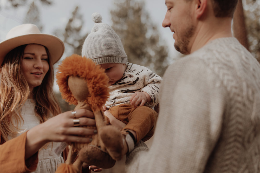 Seattle-Family-Photographer-Kerouac-1389.jpg