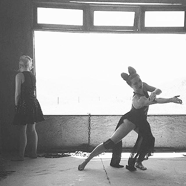 Instagram - Let's dance, Birdy Birdy!!!! Por @desgramatico com @abunev.jpg