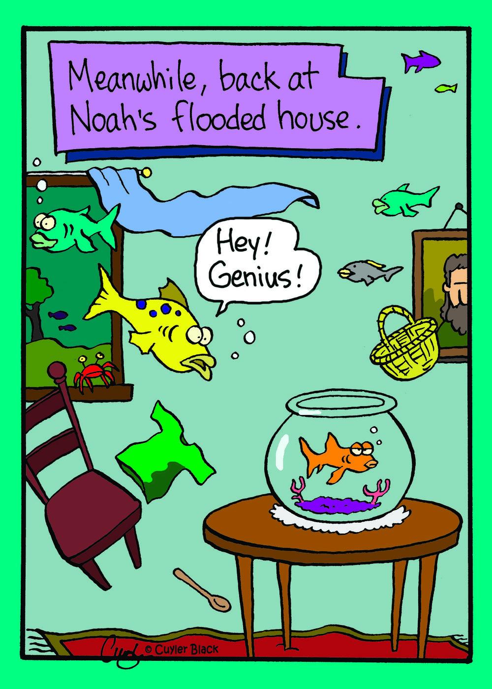 Noah's goldfish.jpg