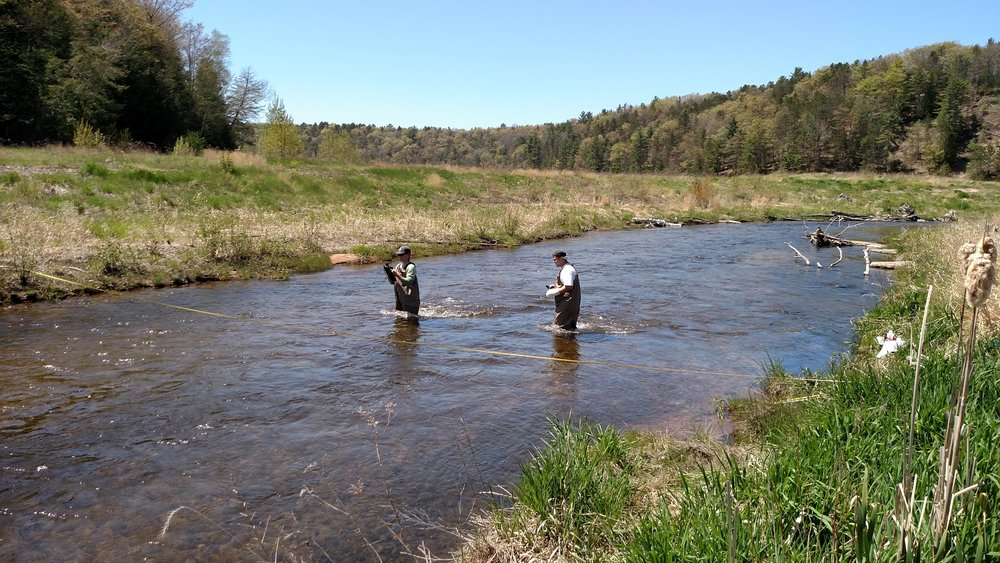 Two Au Sable undergraduate research students collect samples in the Boardman River.