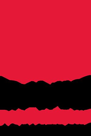 DPA Logo Vert.png