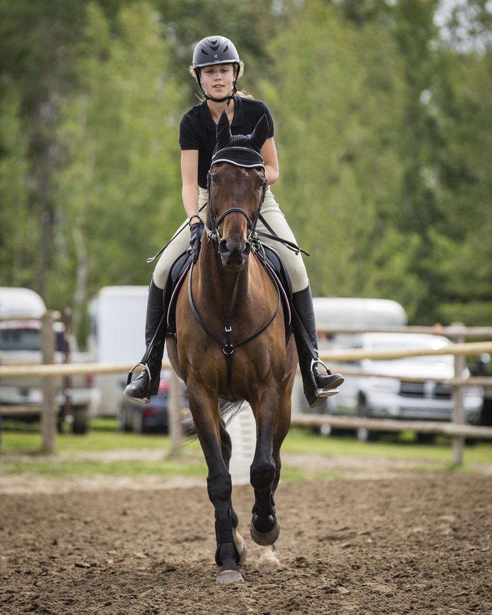 Horseandrider.jpg