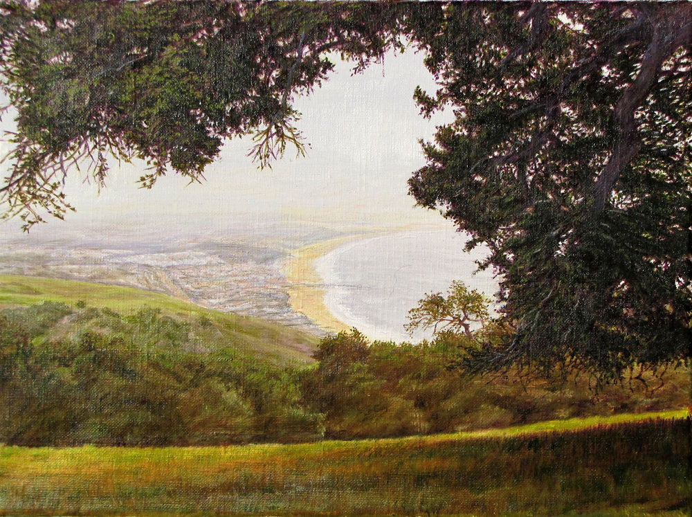 """Idyll Above Pismo""  by Dennis Curry   A new work for the Pismo Preserve show."