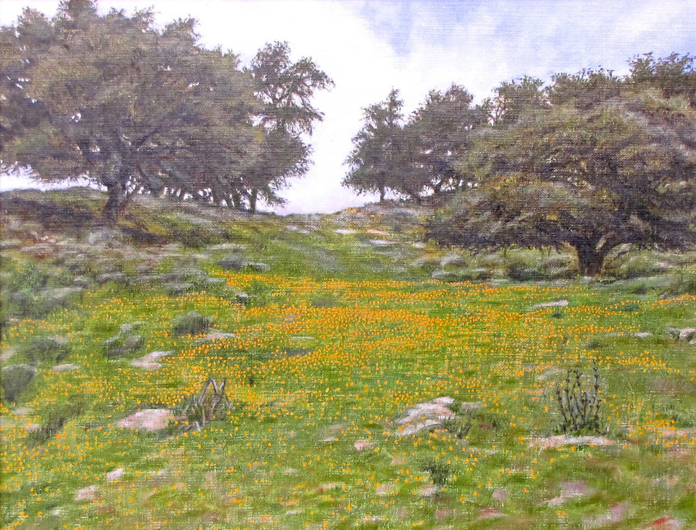 """""""Pismo Preserve""""                   ~SOLD~   by Dennis Curry   A new work for the Pismo Preserve show."""