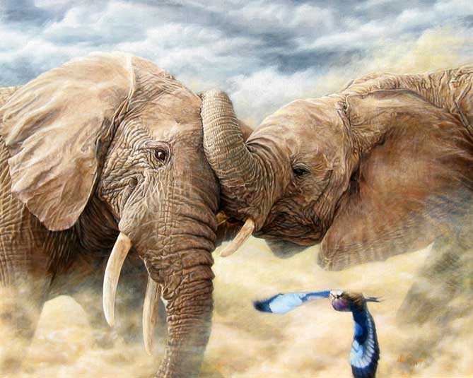 """Dust Up""  by Dennis Curry   Young bull elephants set things flying as they playfully test their strength."