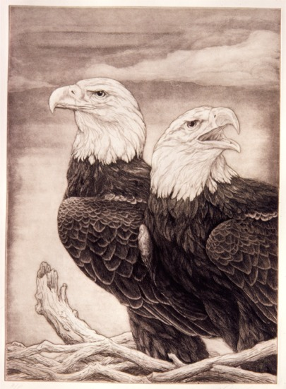 """""""Double Eagle - Paired and Proud""""   by Dennis Curry"""