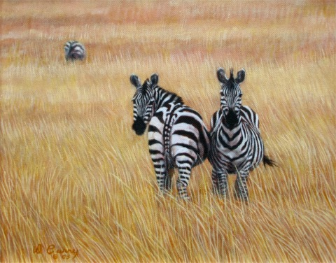 """Heads and Tails""   by Dennis Curry    In typical ""I'll watch your back you watch mine"" positioning these Grants zebra must always be on alert for predators."
