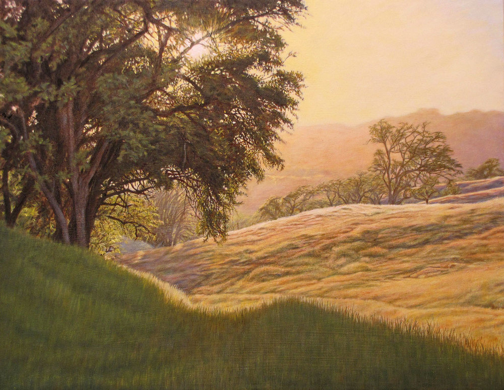 """""""Misty Vale""""                   ~SOLD~    by Dennis Curry    Afternoon mists create a magical feeling, transforming an ordinary scene into something exceptional."""