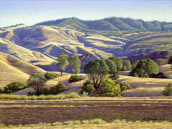 """Sedwich Reserve""   by Dennis Curry    Begun on location, this painting captures the morning light at this University of California at Santa Barbara research and conservation facility in the Santa Ynez Valley."