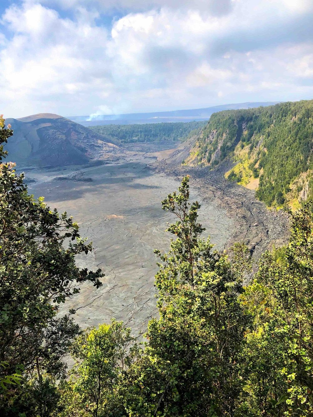 View of Kilauea Crater from the ridge top hike above.