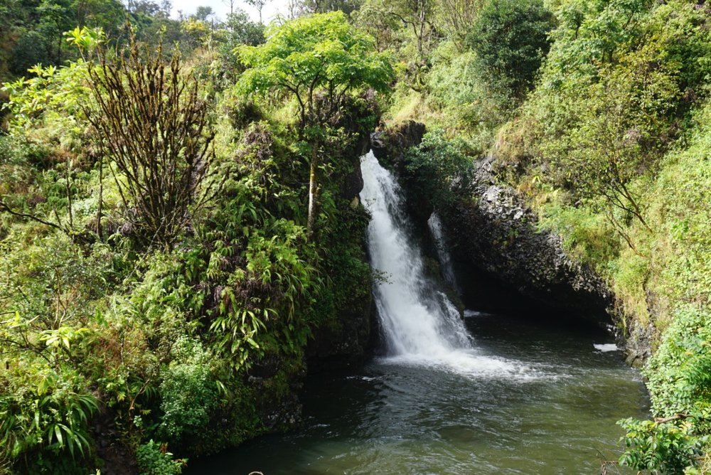 small waterfall off of the road to Hana, Maui.