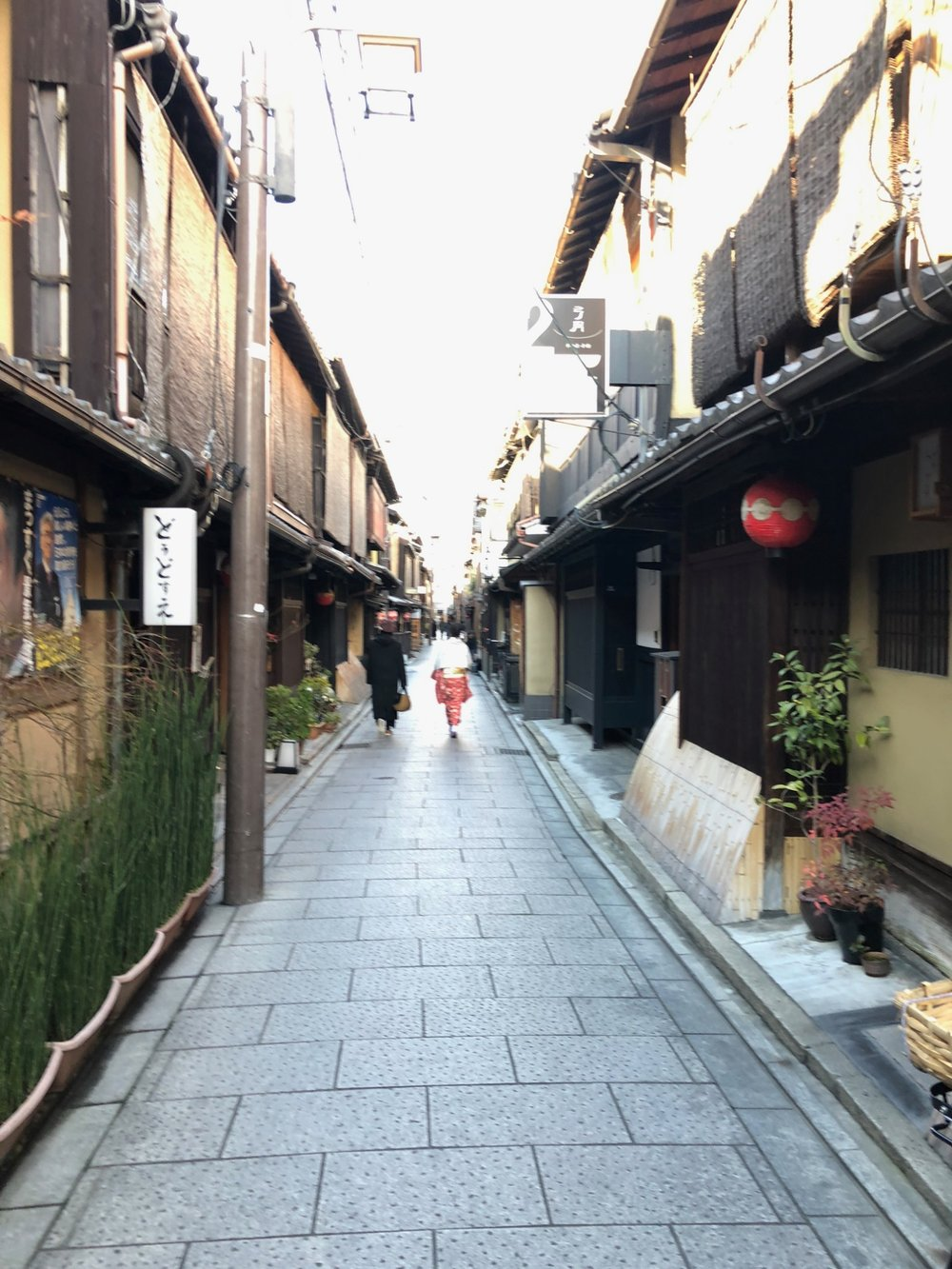 Geisha walks down side street of Gion district in Kyoto, Japan. boldlygotravel.com