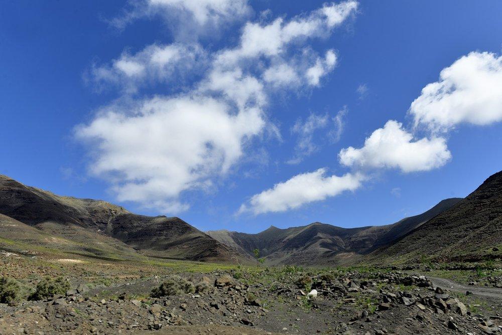 mihalysafran fuerteventura pictures (8).jpg