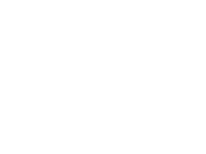 white---officialselection_panafrican_la2016 (1).png
