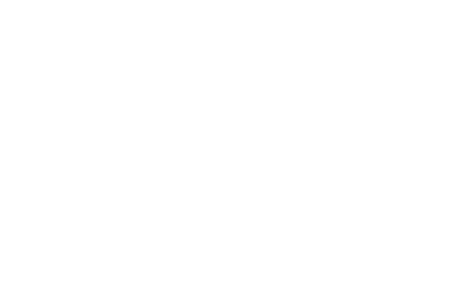BLUEBIRD FINISHING