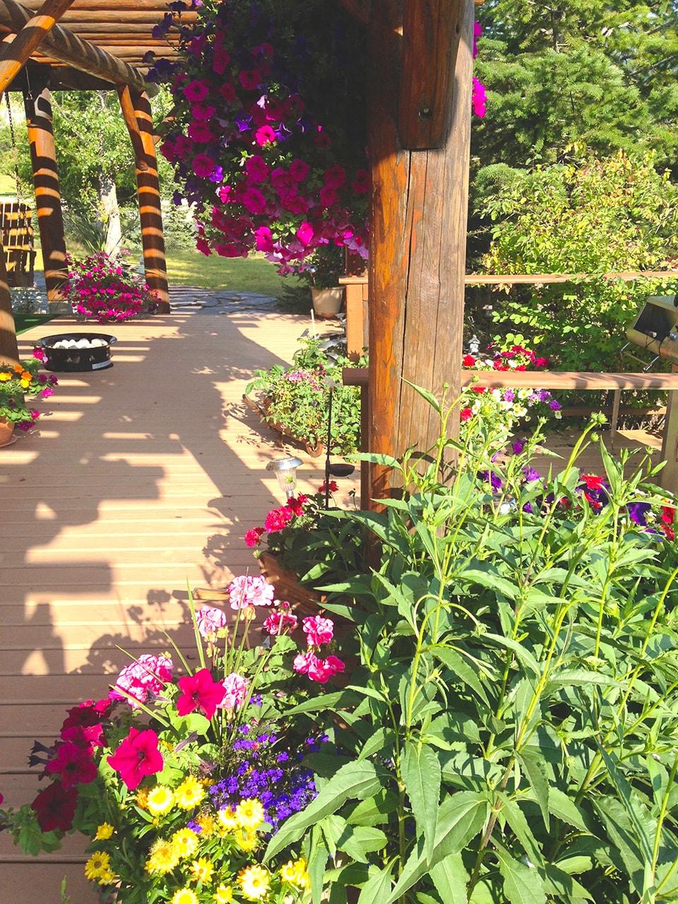 Gardens Surrounding Whitewater Lodge