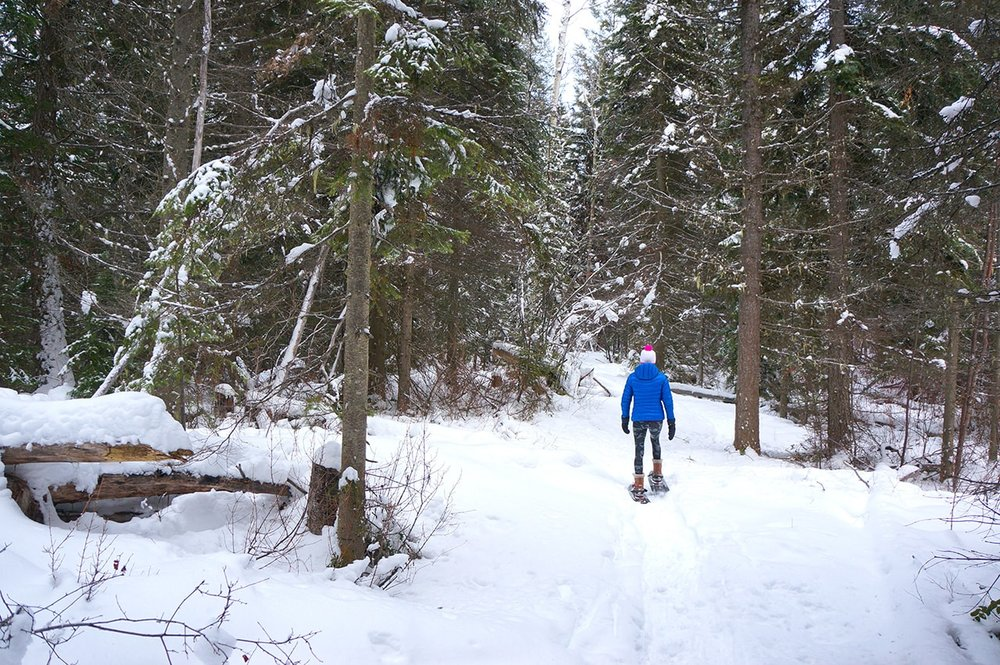 snowshoe-kicking-horse-mountain-resort.JPG
