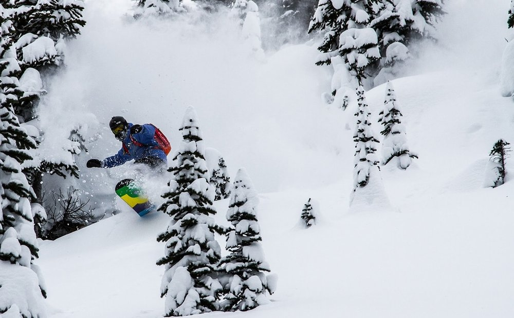 Nothing beats first tracks on a powder day at Kicking Horse Mountain Resort!