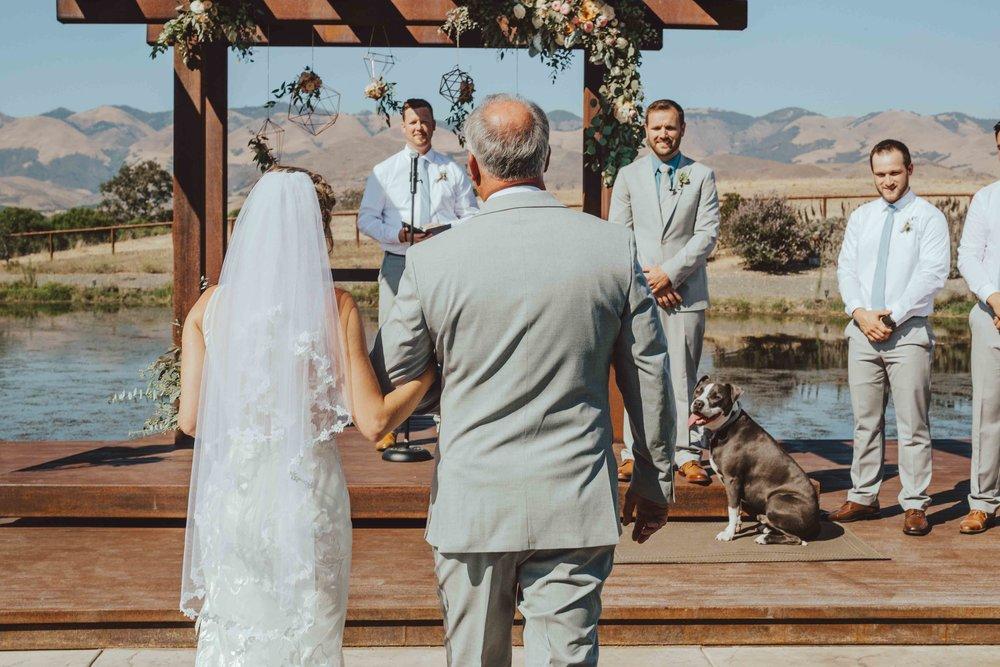 weddingday (17 of 77).jpg