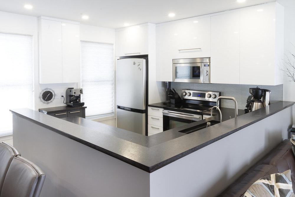 Euro-Style Kitchen