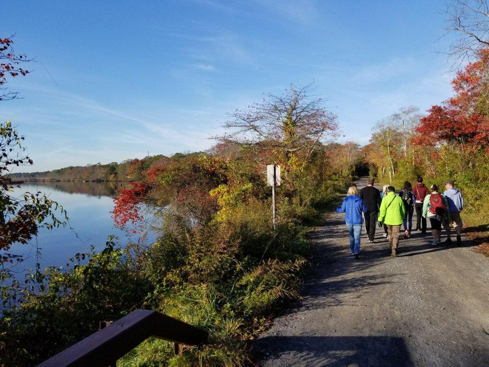 Hiking through the Wertheim National Wildlife Refuge | Fall 2017