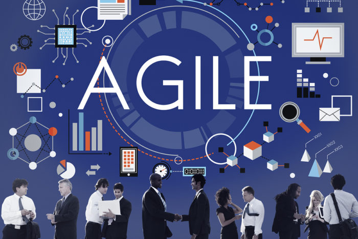 agile-organization-agility-700x467.jpg