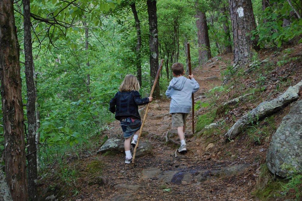 Kids adventure hiking.jpg