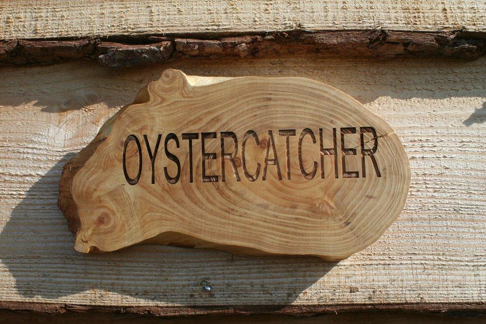 IMG_8660 name plate Oystercatcher.jpg