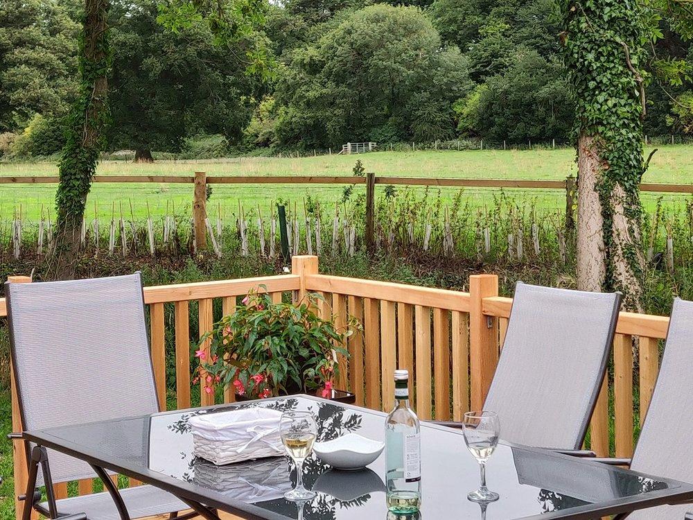 terrace table view wine.jpg