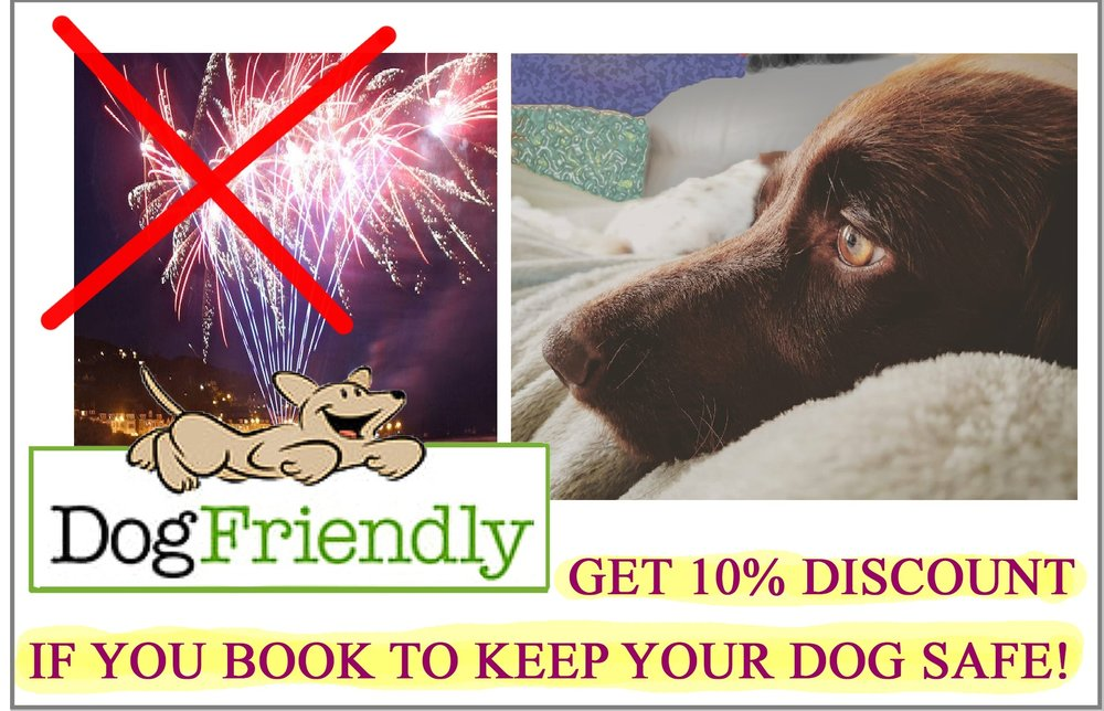comp fireworks-dog 4 elements discount.jpg
