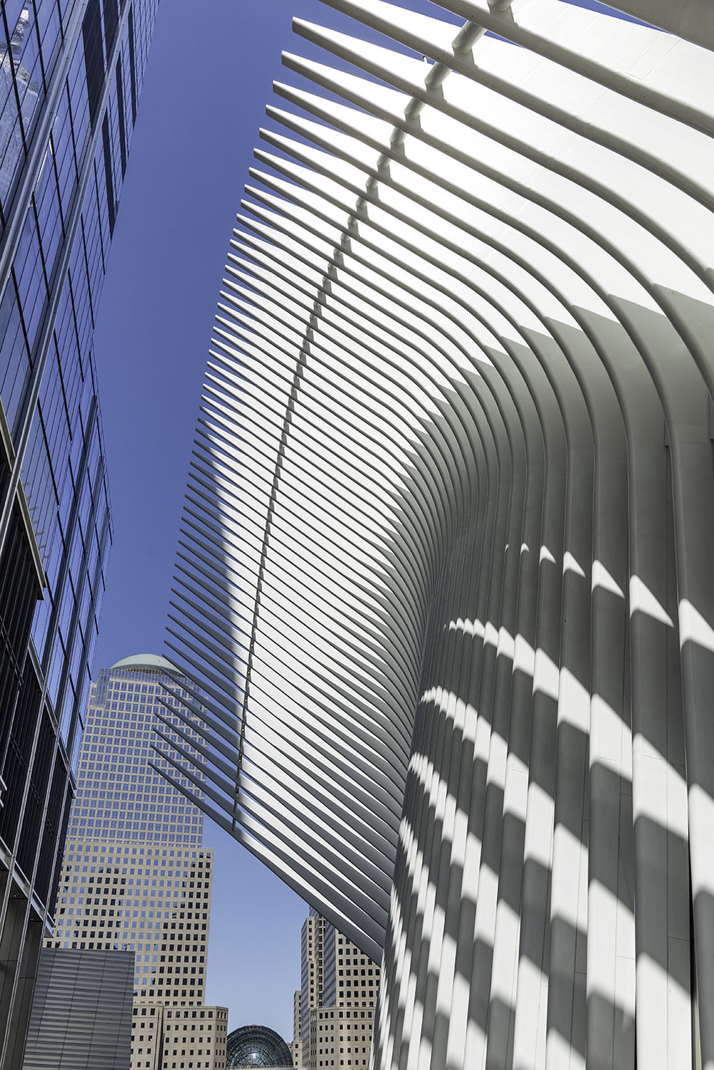 World Trade Center Path_7_WEBSITE_DSC5272_0063.jpg