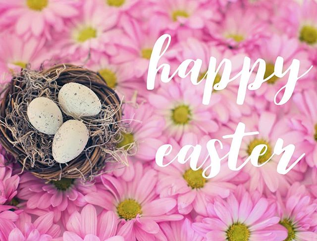 Happy Easter from Northlake Academy of Music! 🐰🐣🌷 #northlakeacademyofmusic #music #musicschool #musiclessons #musicpreschool #mandevillela #sttammany #covingtonla #kidsactivities #kids #fun #easter #eastereggs #spring
