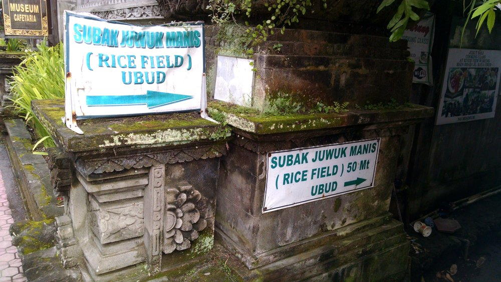 Rice Field Signs