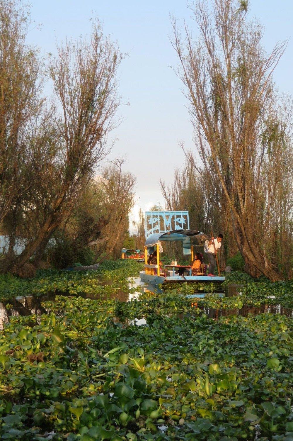 xochimilco_canal.jpg