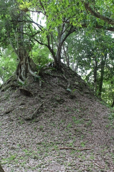 Look! There's a pyramid under there!!
