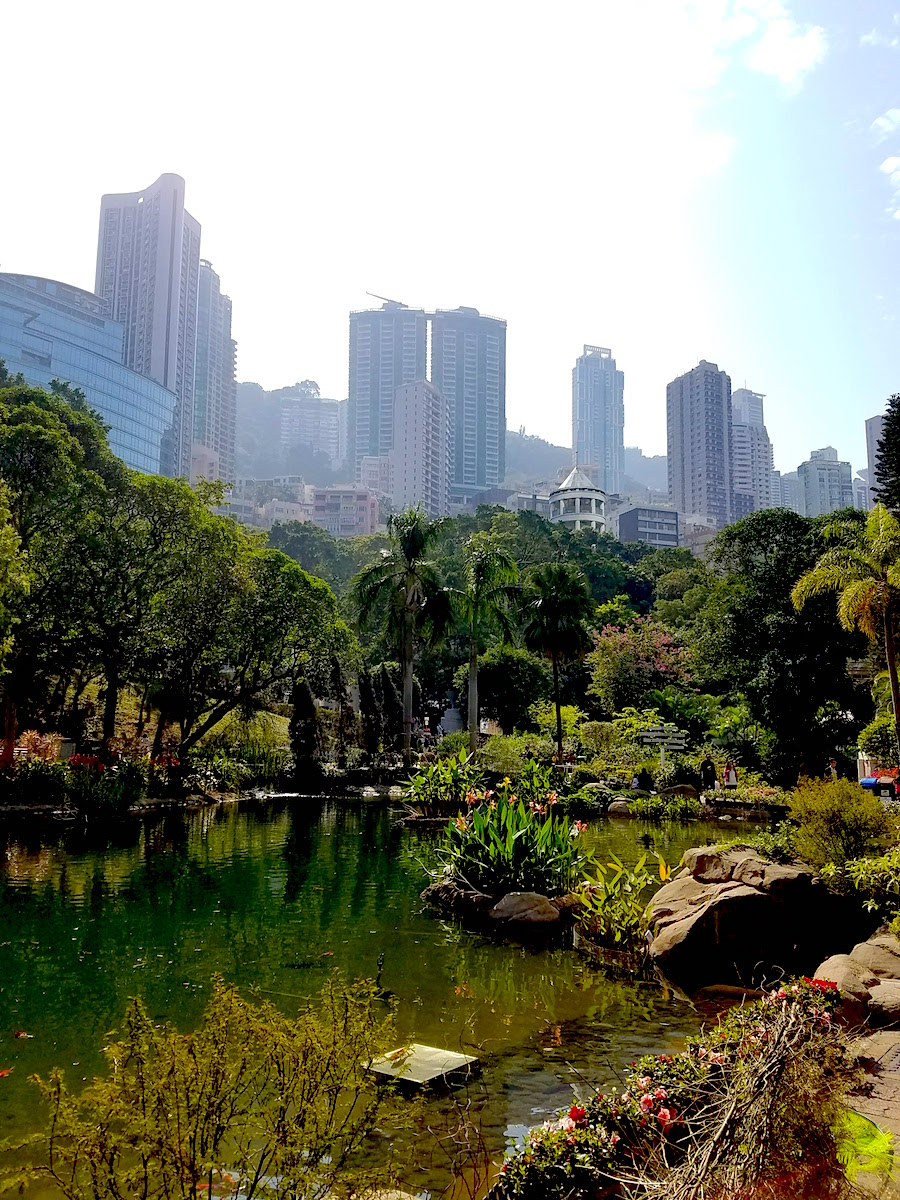 Enjoy a respite in the middle of the city at Hong Kong Park