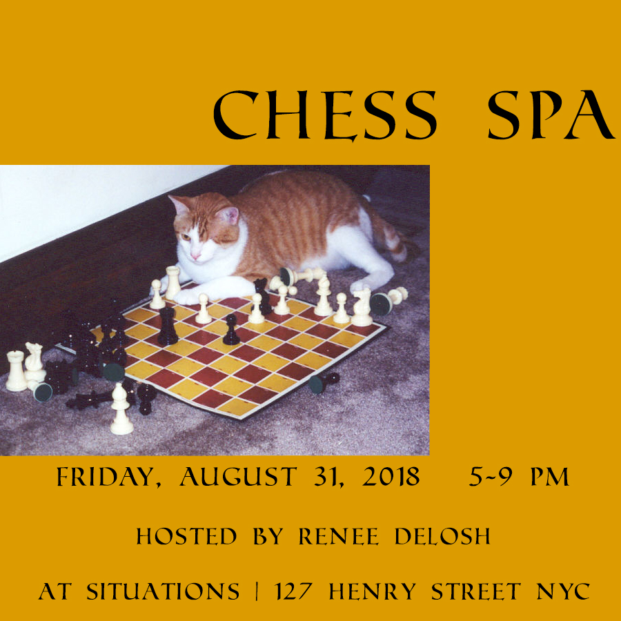 chess-spa-cat-fulltext.jpg