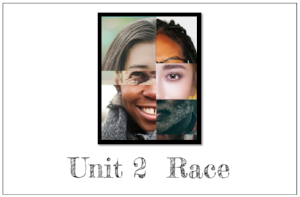 Unit 2: Race  focuses on the history and current impact of whiteness and race in the United States. Contains 15 Print & Go Lesson Plans.