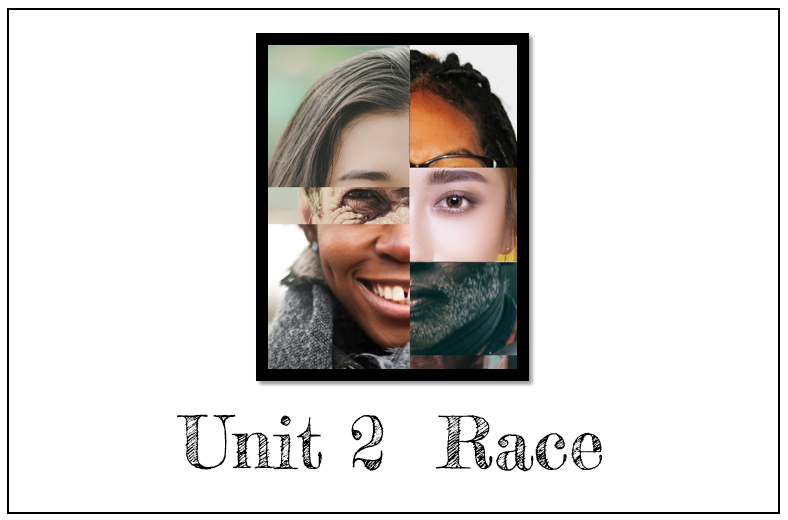 Race (from $24.99) - focuses on the history and current impact of whiteness and race in the United States. Contains 15 Print & Go Complete Lesson Plans with teacher exemplars.