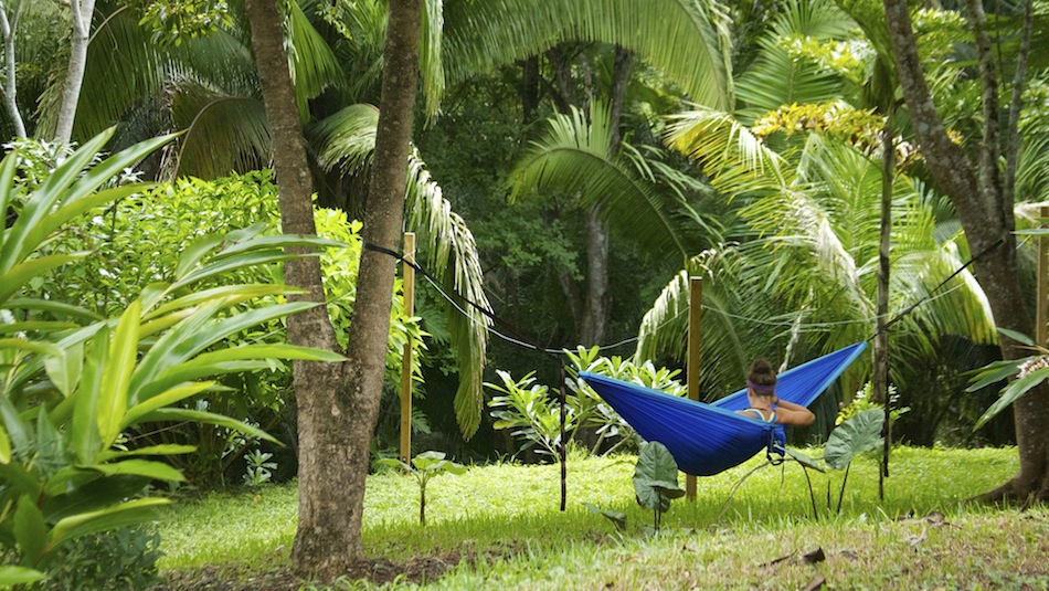 Student in Hammock - SS Size.jpeg