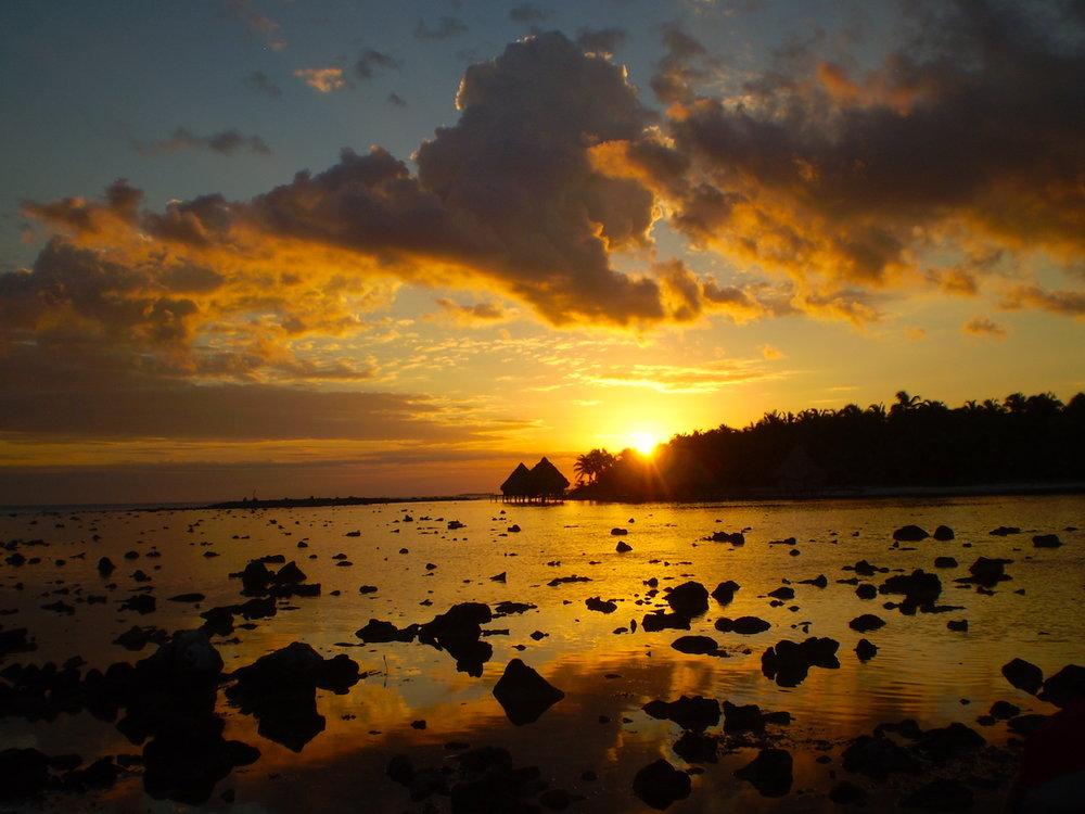 Reef Sunset - SS SizeJPG.JPG