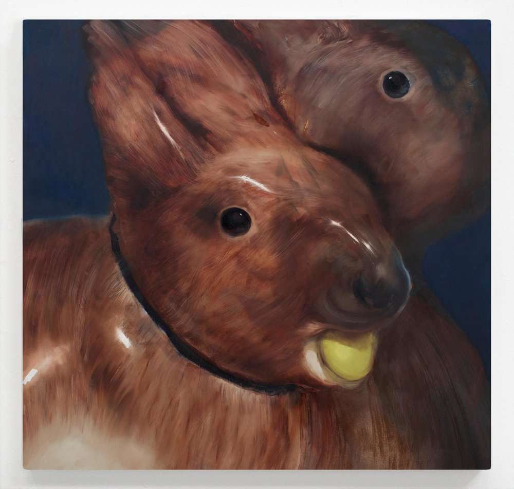 """hare hare  27"""" x 28"""" Oil on Wood, 2016"""