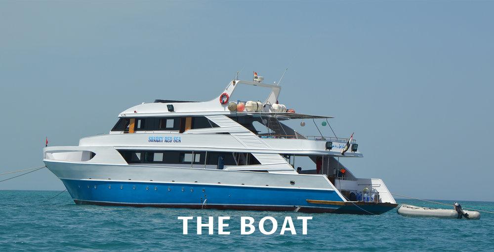 Boat -.jpg