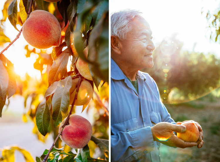 The Sweetest Peaches Come From this Family