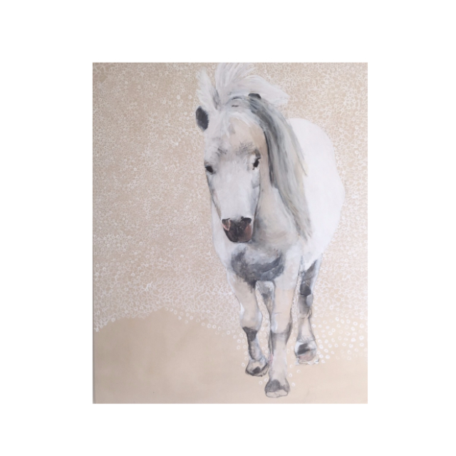 wit paard.jpg